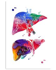 Anatomical Liver 24x36 Poster front
