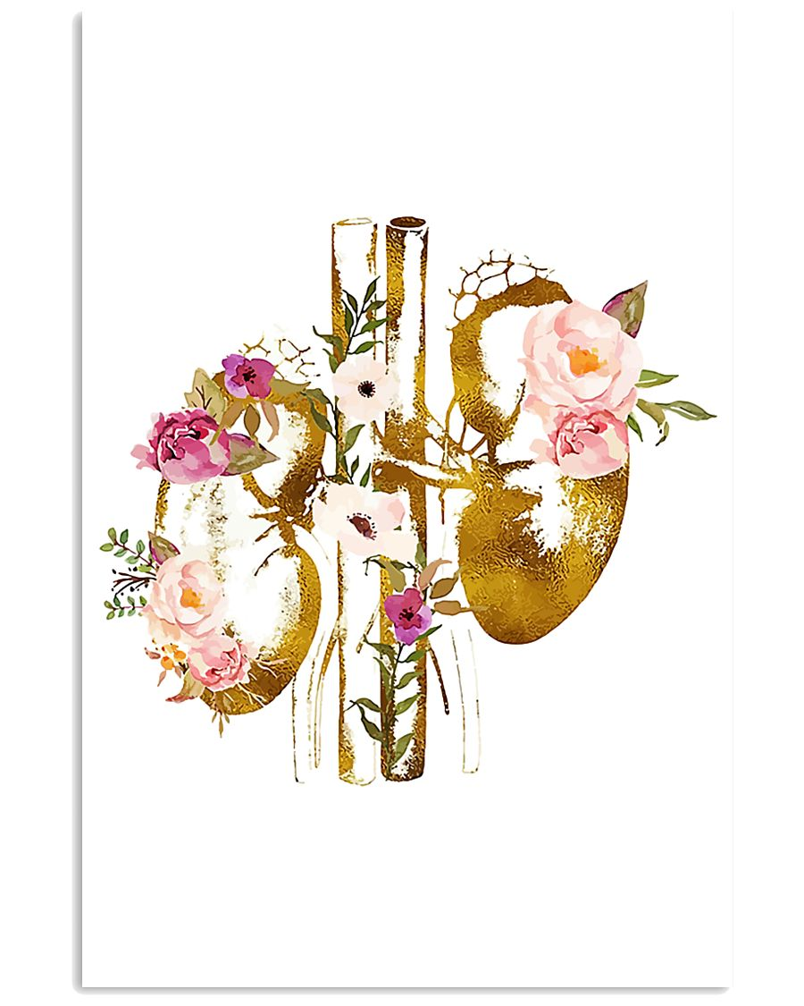Kidney Anatomy floral 24x36 Poster