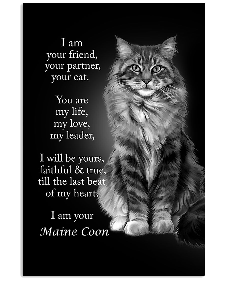 CAT I AM YOUR MAINE COON 16x24 Poster