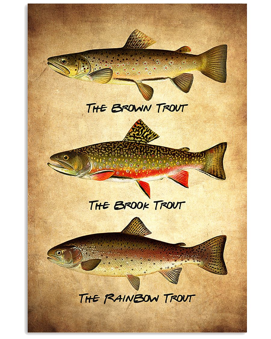 Trout Poster - Fish Print 11x17 Poster