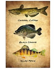 Fish Poster - Discounted Set of 3 11x17 Poster front