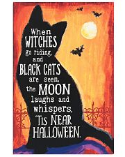 BLACK CATS ARE SEEN THE MOON 16x24 Poster front