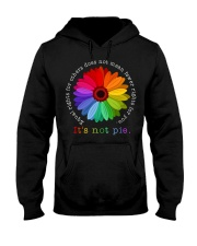 Equal Rights For Others Does Not Mean Fewer Rights Hooded Sweatshirt thumbnail