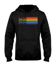 Pride Flag Meaning Hooded Sweatshirt thumbnail