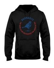 Bernaste The Bern In Me Recognizes The Bern In You Hooded Sweatshirt thumbnail