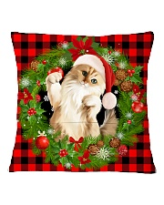 tg-cat-3-2511 Square Pillowcase back