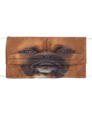Amazing Boxer Cloth face mask front