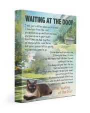 Siamese - Waiting at the door 11x14 Gallery Wrapped Canvas Prints front