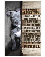 I love Pit Bulls 24x36 Poster front
