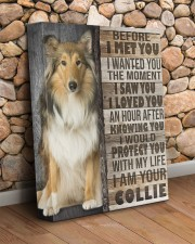 Collie - Before I met you 11x14 Gallery Wrapped Canvas Prints aos-canvas-pgw-11x14-lifestyle-front-18