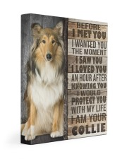Collie - Before I met you 11x14 Gallery Wrapped Canvas Prints front