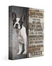 Boston terrier - I am your friend 11x14 Gallery Wrapped Canvas Prints front