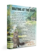 Maine Coon - Waiting at the door 11x14 Gallery Wrapped Canvas Prints front