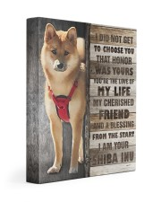 Custom Shiba Inu 11x14 Gallery Wrapped Canvas Prints front