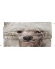 Amazing Chinese Crested Cloth face mask front
