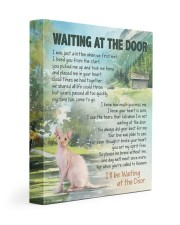 Sphynx - Waiting at the door 11x14 Gallery Wrapped Canvas Prints front