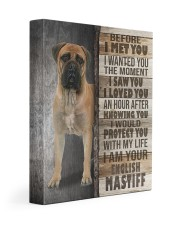 English mastiff - Before I met you 11x14 Gallery Wrapped Canvas Prints front