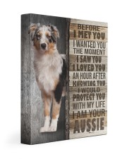 Aussie  - Before I met you 11x14 Gallery Wrapped Canvas Prints front
