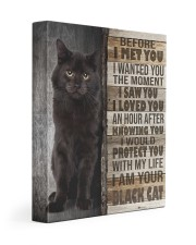 Black cat - Before I met you 11x14 Gallery Wrapped Canvas Prints front