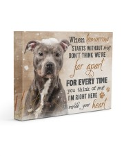 Pit Bull - I'm right here in your heart 14x11 Gallery Wrapped Canvas Prints front