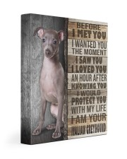 Italian Greyhound - Before I met you 11x14 Gallery Wrapped Canvas Prints front