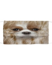 Amazing Spaniel  Cloth face mask front