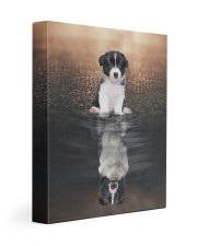 Boder Collie Reflection 11x14 Gallery Wrapped Canvas Prints front