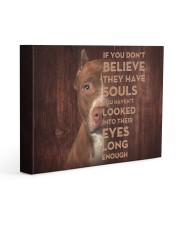 Pit Bull - Look into their eyes 14x11 Gallery Wrapped Canvas Prints front