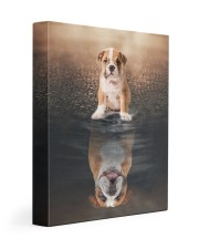 English bulldog - I am not a baby 11x14 Gallery Wrapped Canvas Prints front