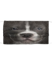 Amazing Staffordshire Bull Terrier Cloth face mask front