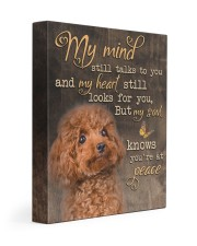 My mind still talks to you - Poodle 11x14 Gallery Wrapped Canvas Prints front
