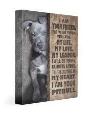 Pit Bull - I am your friend 11x14 Gallery Wrapped Canvas Prints front