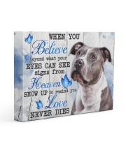 Pit Bull - Love never dies 14x11 Gallery Wrapped Canvas Prints front
