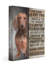 Brown Dachshund - Before I met you 11x14 Gallery Wrapped Canvas Prints front