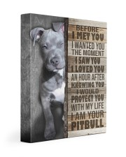 Pit Bull - Before I met you 11x14 Gallery Wrapped Canvas Prints front