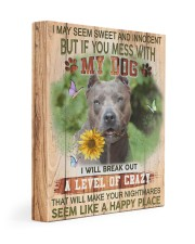 Pit Bull - Don't mess with my dog 11x14 Gallery Wrapped Canvas Prints front
