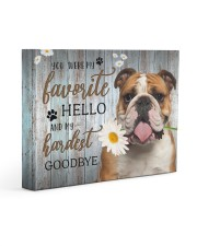 English bulldog - My favorite hello 14x11 Gallery Wrapped Canvas Prints front