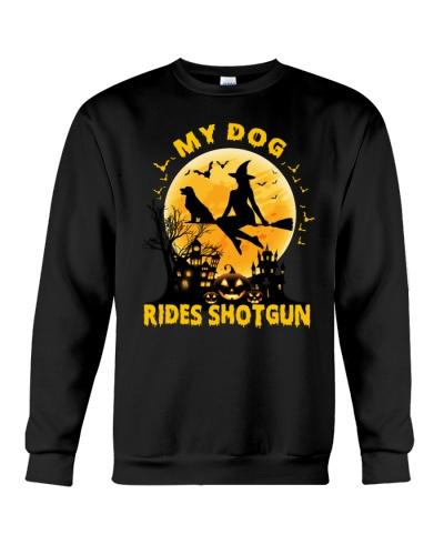 My Dog Rides Shotgun