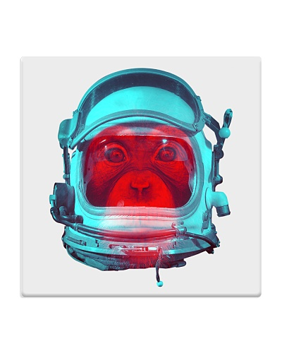 Mokey space