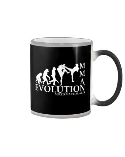 MMA Evolution