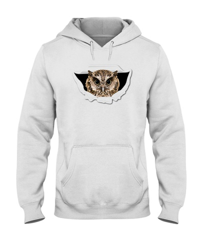 Owl 112019-9