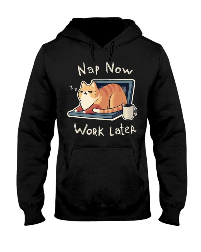 Cat Nap Now Work Later
