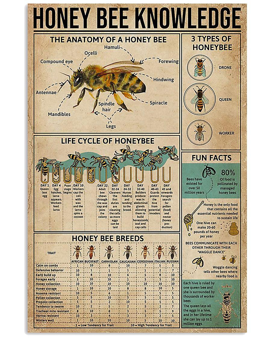Honey Bee Knowledge 11x17 Poster