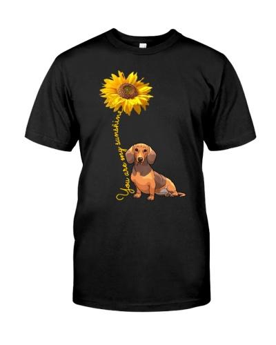 You are my sunshine dachshund 0037