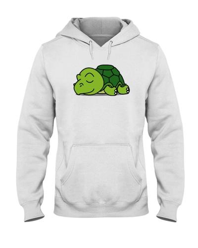 turtle lazy  0005