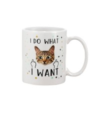 I Do What I Want Mug front