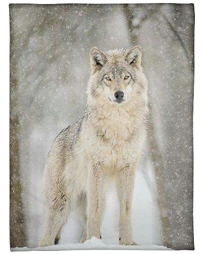 Snow wolf solitary animal forest