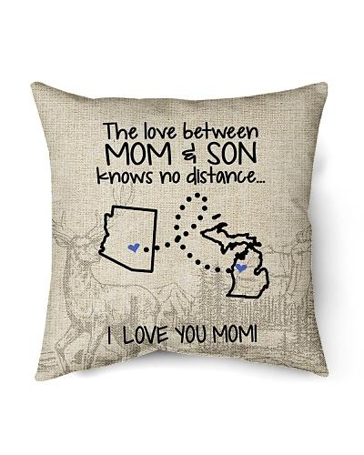 MICHIGAN ARIZONA THE LOVE MOM AND SON