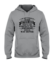 I'M NOT PERFECT I'M FROM NETHERLANDS Hooded Sweatshirt thumbnail