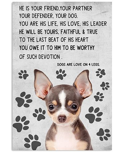 CHIHUAHUAS ARE LOVE ON 4 LEGS